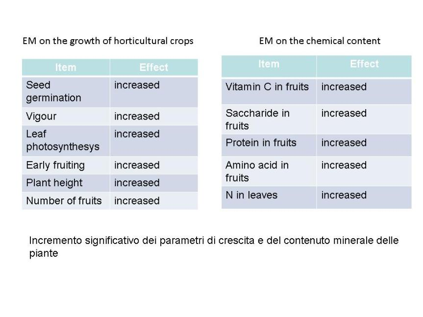 EM cultivation