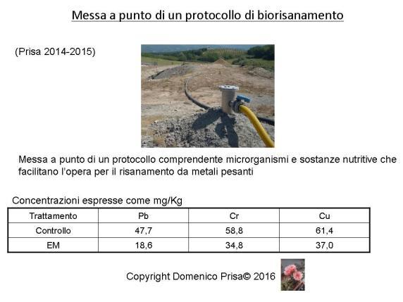 Vittorio Veneto presentazione 27 Agosto dr. Prisa
