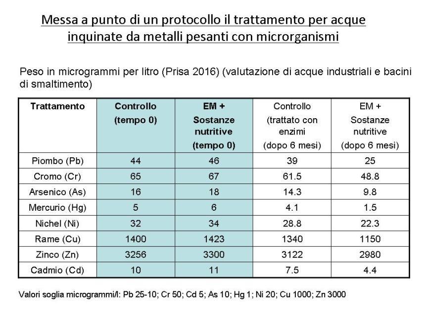 Risanamento ambientale con microrganismi- Dr. Domenico Prisa.jpg