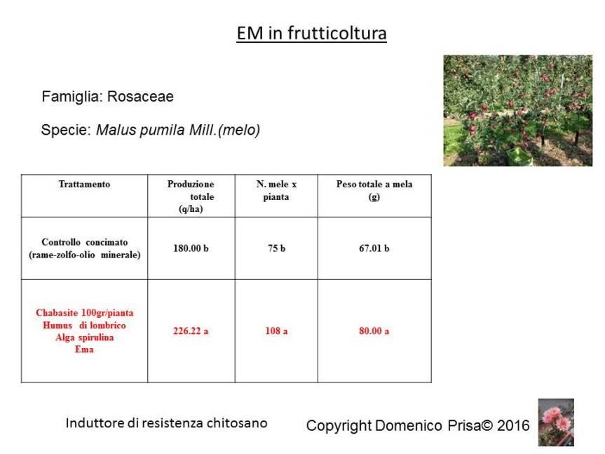 La coltivazione e la difesa del melo senza chimica disintesi