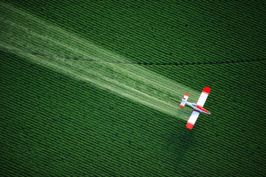 Effetto dei pesticidi sulla microbiologia delsuolo