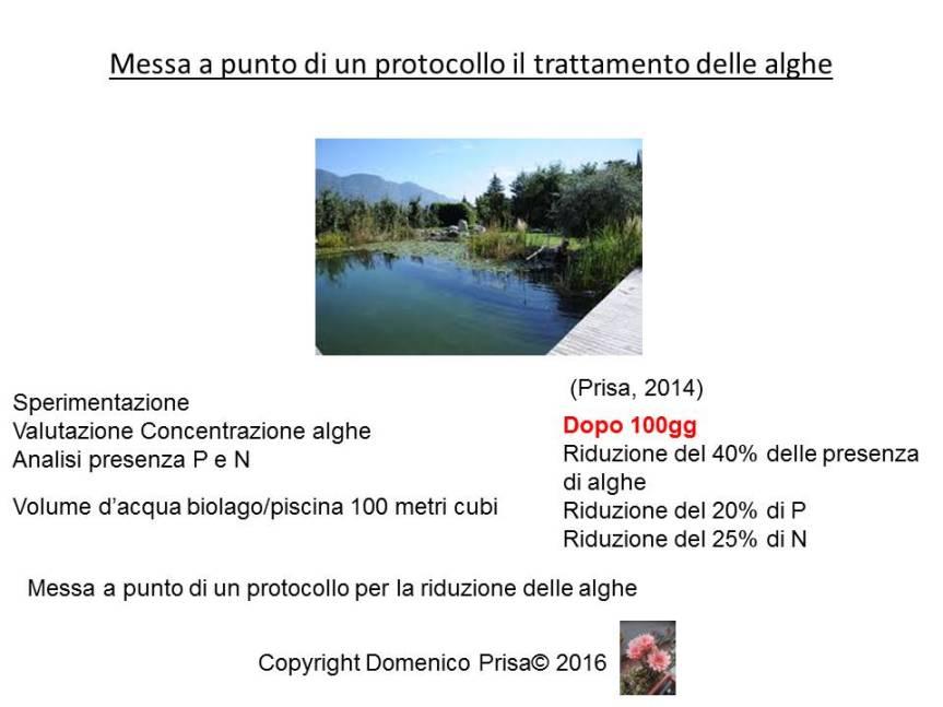 vedelago-presentazione-30-settembre-dr-prisa