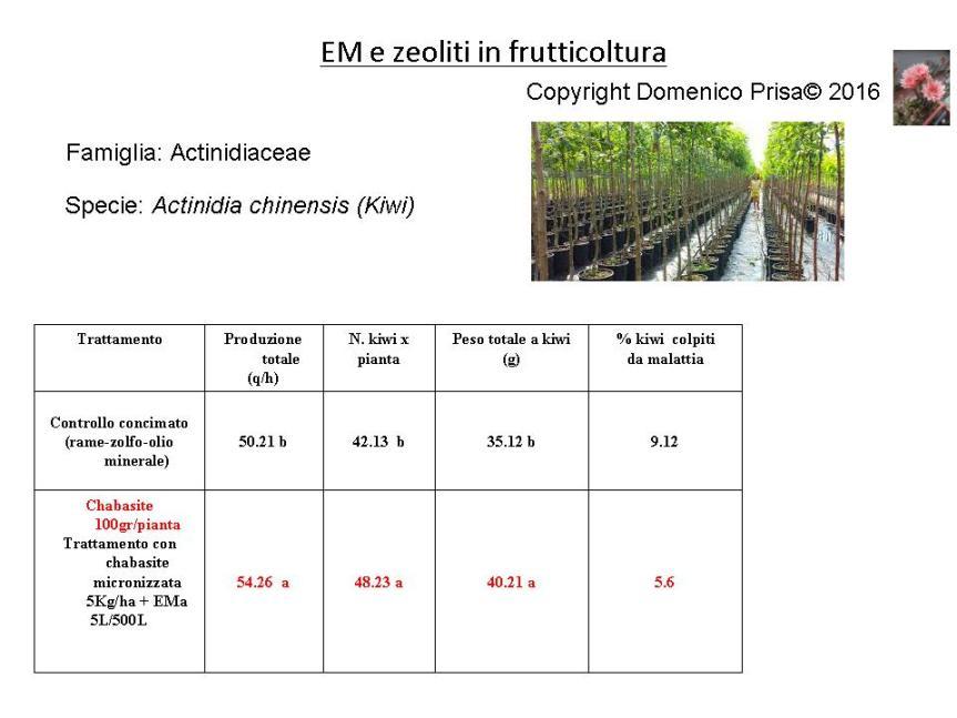 La coltivazione e difesa micronaturale delkiwi