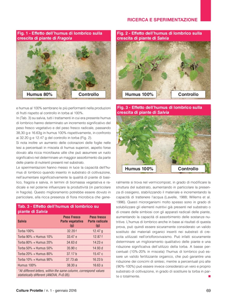 37)06_Ricerca_Prisa-humus-BB2-004