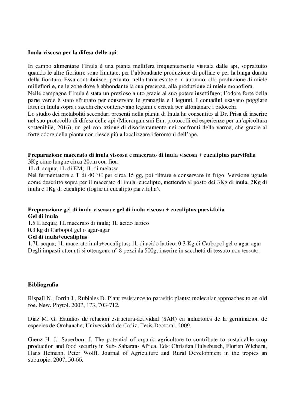 Inula-Viscosa_-controllo-della-mosca-dell'olivo-e-protezione-delle-api-da-varroa-004