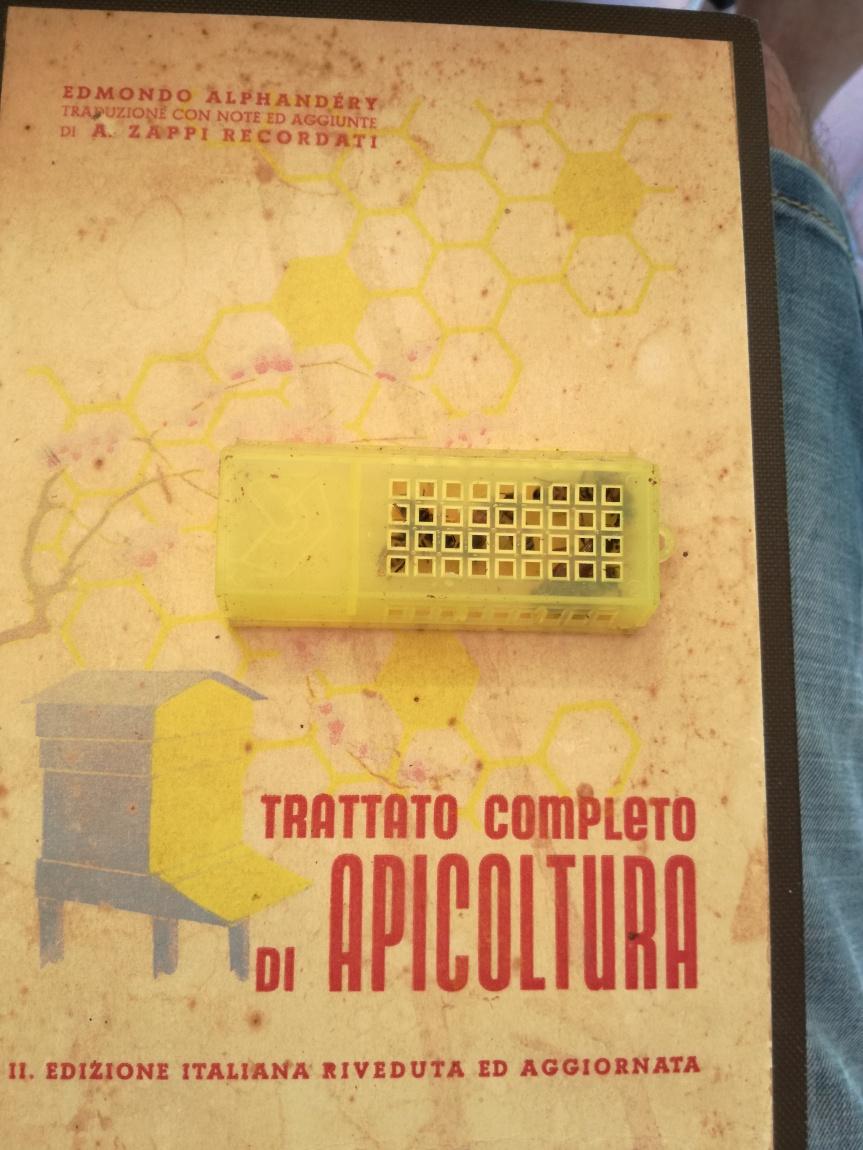 Micronaturale: Trattato completo di apicoltura (EdmondoAlphandery)