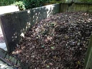 Micronaturale: il compost e le suecaratteristiche