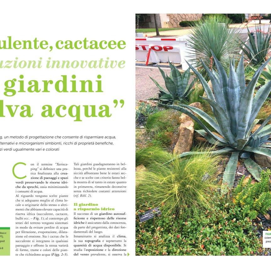 Micronaturale: Soluzioni innovative per giardini salvaacqua