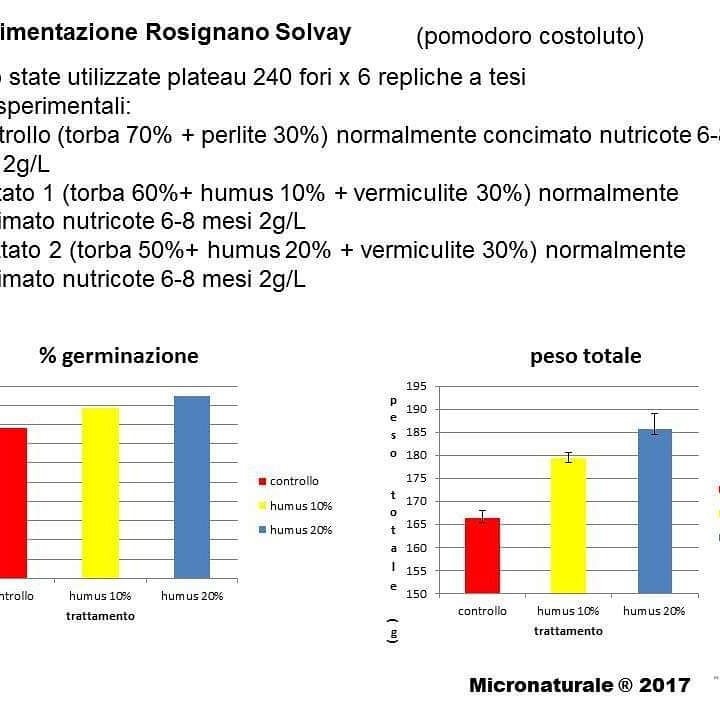 Micronaturale: I microrganismi nella formazione dell'humus