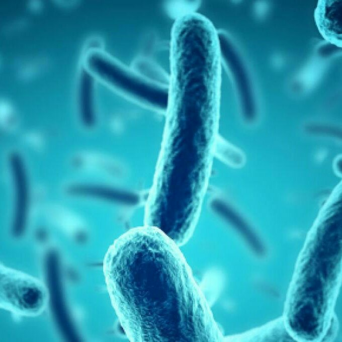Micronaturale: i cambiamenti del microbioma umano e lemalattie