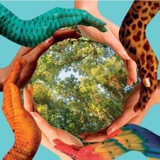 Micronaturale: Presupposti e obiettivi per passare da un'agricoltura Convenzionale ad un'agricoltura Micronaturale