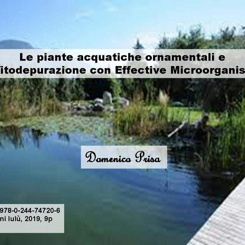 Article: Le piante acquatiche ornamentali e la fitodepurazione con EffectiveMicroorganisms