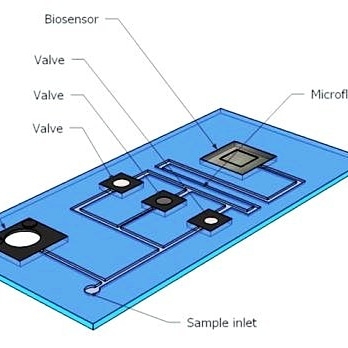 I biosensori a cosaservono?