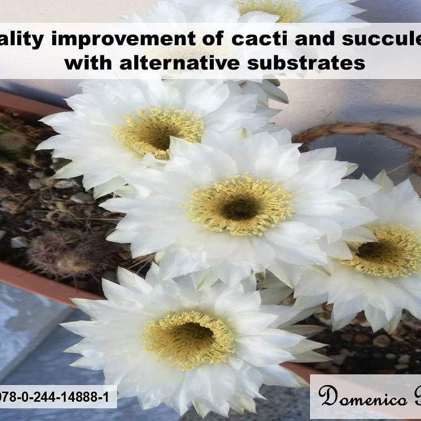 Book: Quality improvement of cacti and succulents with alternative substrates