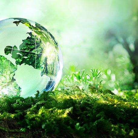 La biodiversità e le interazioni uomo eambiente