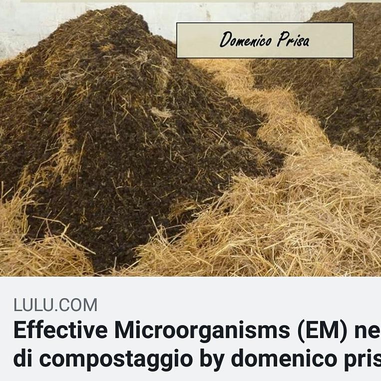 Libro: Effective Microorganisms (EM) nel processo dicompostaggio