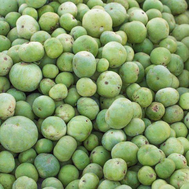 Piante alimentari insolite: Praecitrullus fistulosus(Tinda)
