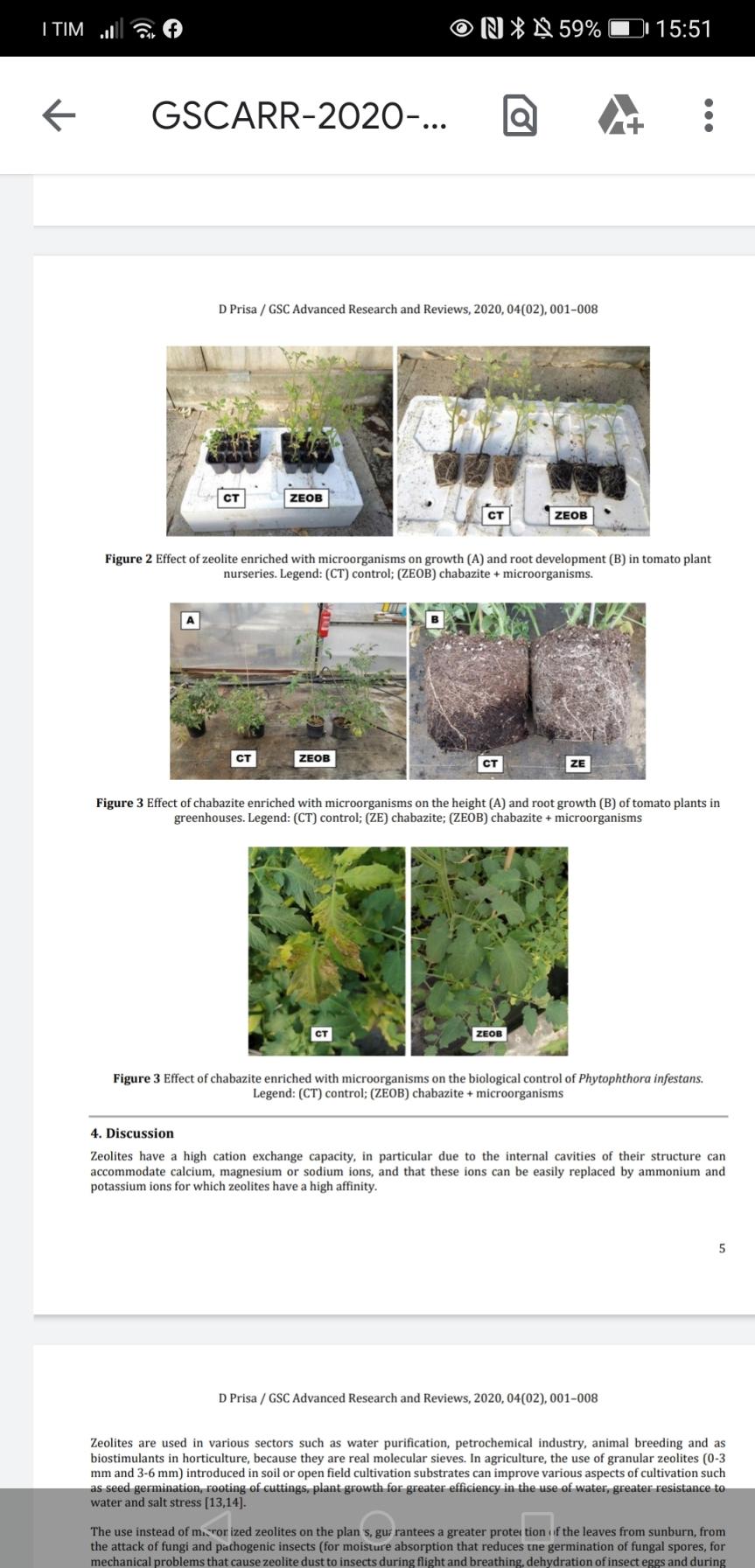 Articolo: Zeolitite a chabasite arricchita di microrganismi nella coltivazione e difesa dipomodoro